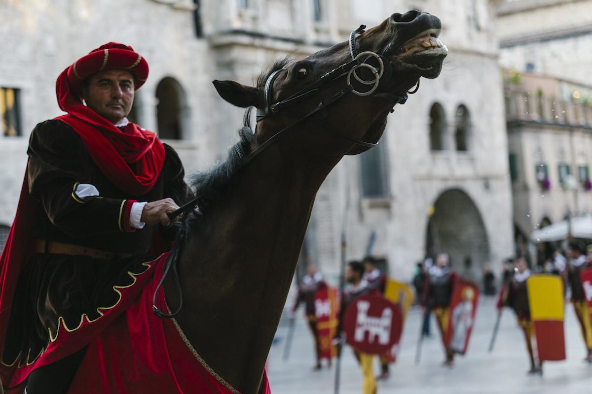 Quintana di Agosto 2017: la Giostra della tradizione ad Ascoli Piceno