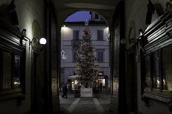 Natale ad Ascoli: Bosch accende l'Albero di Natale per il Piceno
