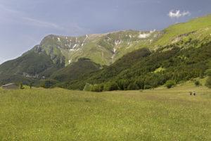 Uscita-n.4_marche-Altino_Santa_Maria_in_Pantano